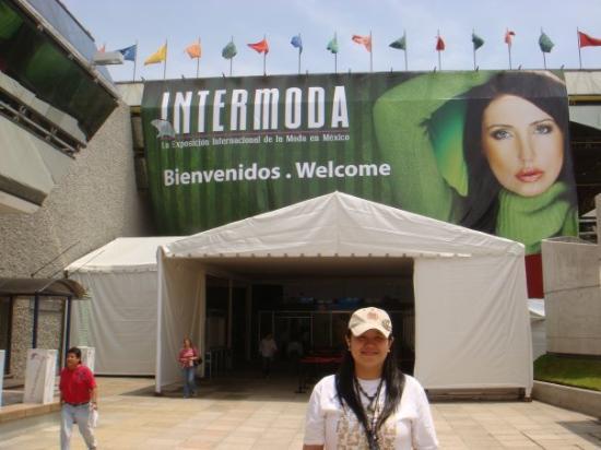 กวาดาลาฮารา, เม็กซิโก: 2008年-Guadalajara Mexico