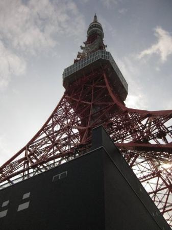 โตเกียวทาวเวอร์: 在东京铁塔  第一次眺望~