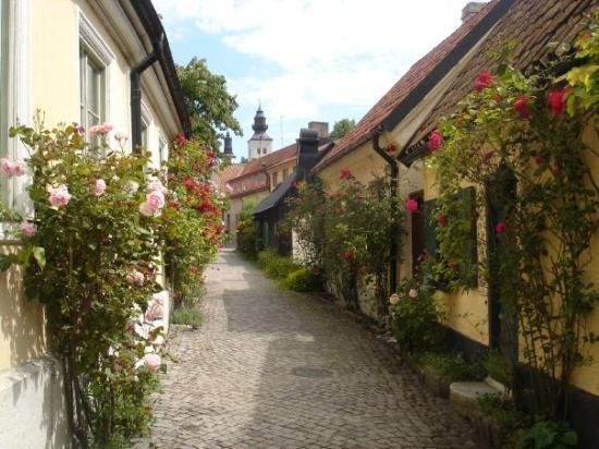 Gotland, Suède : Fantastiskt vacker gränd i Visby