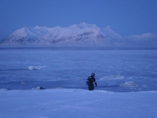 ลองเยียร์เบียน, นอร์เวย์: Spitzbergen