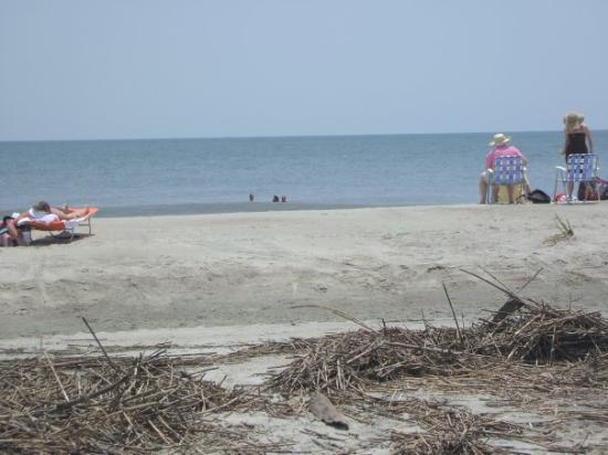 Atlanta Ga Tybee Island Beach