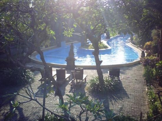 منتجع ومنتج ميلاستي بيتش الصحي: The pool outside our room