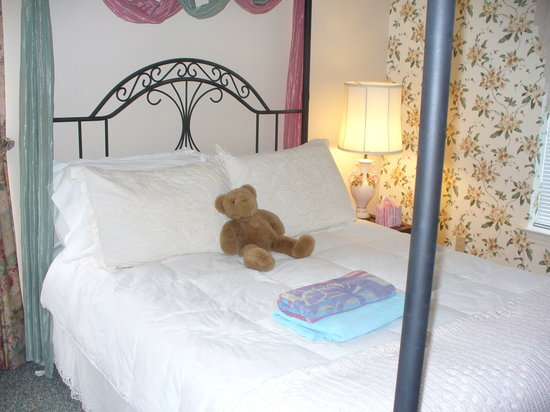 Carrington House Bed and Breakfast: Teddy Bear is ready to cuddle