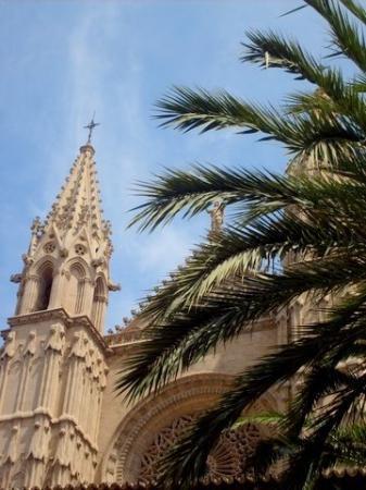 Catedral de Mallorca ภาพถ่าย