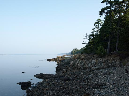Deer Island Point Park Campground: Northern Morning View From Our Campsite