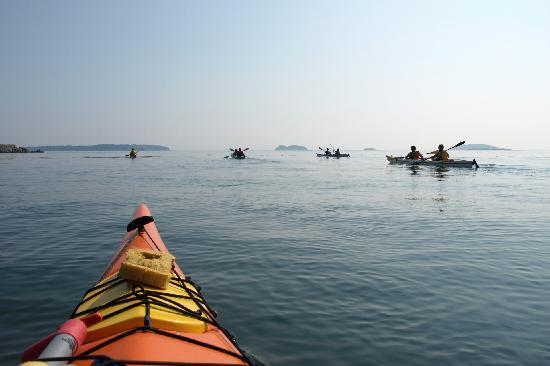 Deer Island Point Park Campground : Kayaking With Seascape Kayak Tours