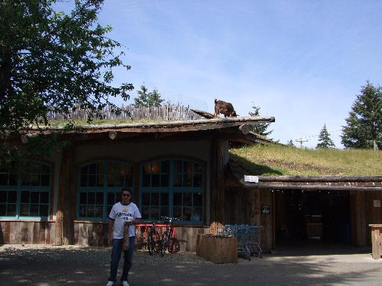 Long Beach Lodge Resort: be sure to stop at the goats on the roof market in Coombes