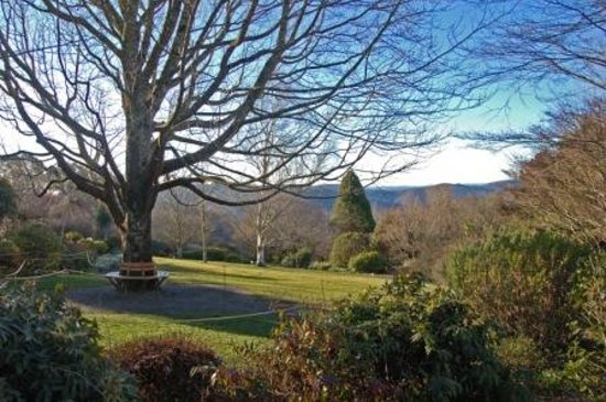 The Blue Mountains Botanic Garden: Beautiful vistas everywhere you look