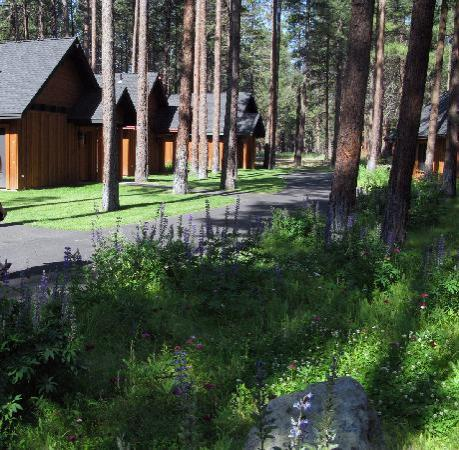 Five Pine Lodge & Spa : Cabins at the Five Pine Lodge