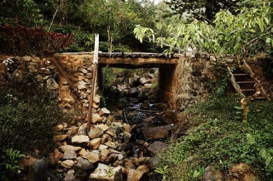 Wayanad District, India: Rivulets, waterfalls and bridges make walks fun.