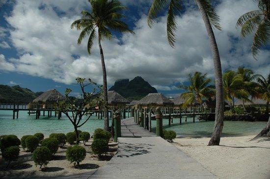 Bora Bora Pearl Beach Resort & Spa: pearl