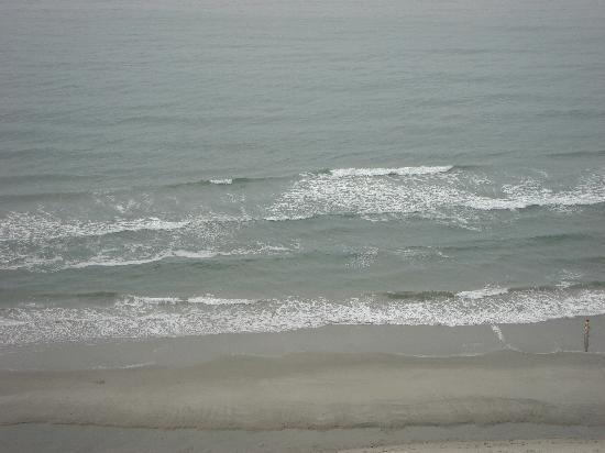 Beach Cove Resort: the Atlantic ocean