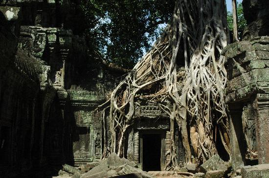 Siem Reap, Cambodia: it s better without people