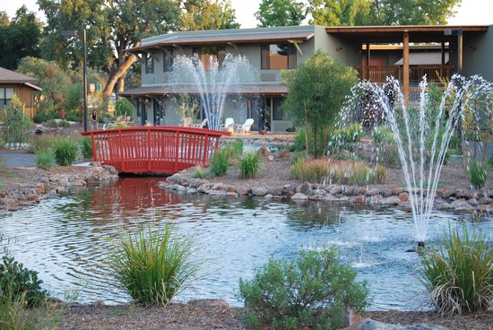 Gaia Hotel & Spa Redding, an Ascend Hotel Collection Member: pond