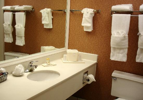 Quality Inn Medical Park: room # 409