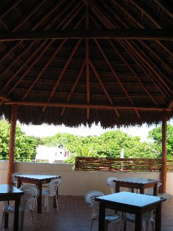 Posada Luna del Sur: Palapa roof above eating area. It's not more than 2 months old!