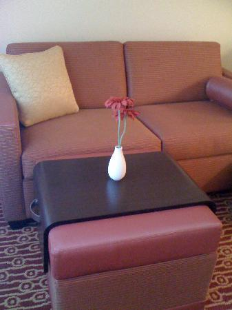 TownePlace Suites Fayetteville Cross Creek: Sofa and fake daisy