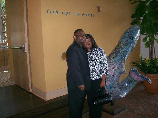 Fish Out Of Water : Tim Johnson & Sharon Dowdell