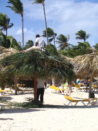 Grand Bahia Principe Punta Cana: Abri sur la plage et le complexe.  Il y en a beaucoup et les chaises ne manquent pas.