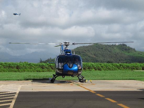 The Na Palli Coast  Picture Of Blue Hawaiian Helicopters  Kauai Lihue  T