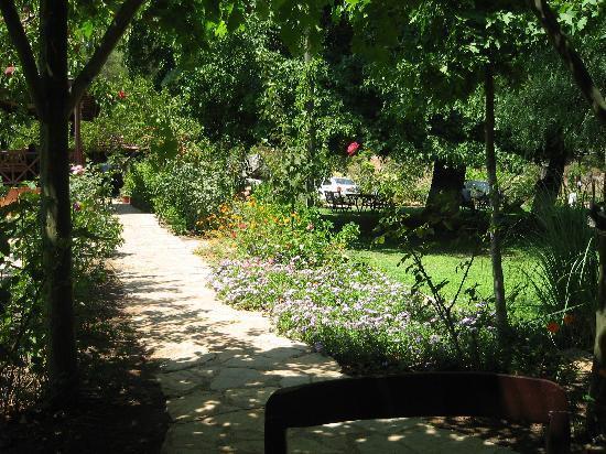Dalya Life: Gardens