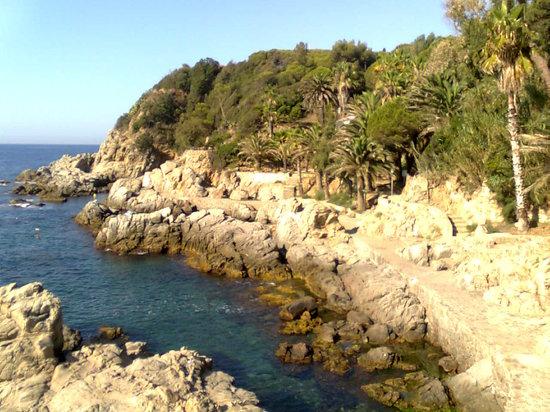 Maria del Mar : lioret de mar
