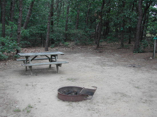 Atlantic Oaks Campground : Empty Campsite