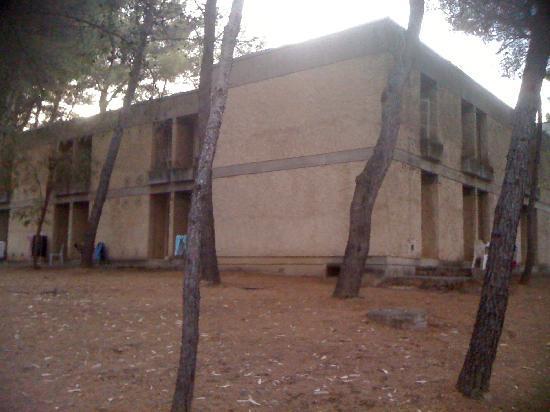 Belambra Clubs - Les Jasmins: les logements....