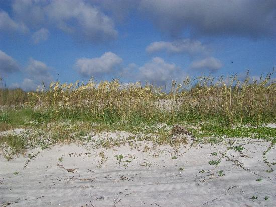Little Talbot Island State Park: beach