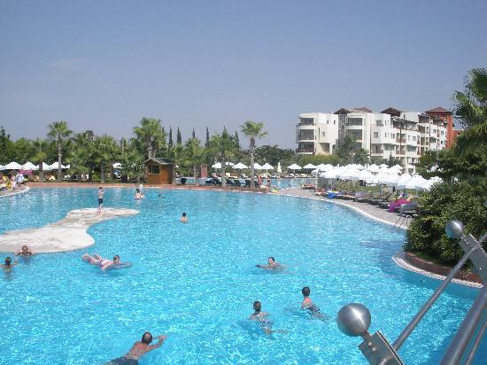 Barut Lara: The pool