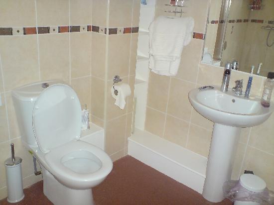 Padley Farm: Toilet and Basin