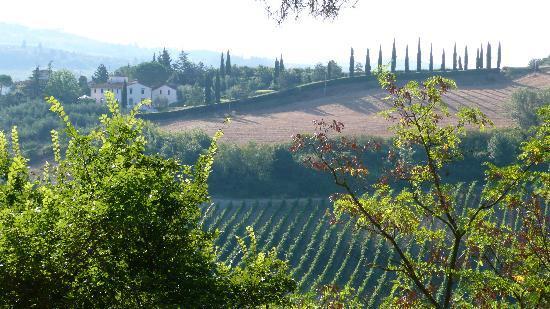 Le Mandrie di Ripalta: vue depuis notre location