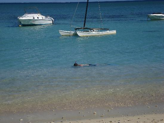Snorkelling off the Beach