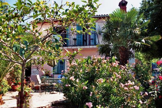 Haus Tonina: Das Schöne Haus