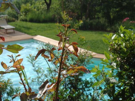 Il Podere di Toscana: la piscina