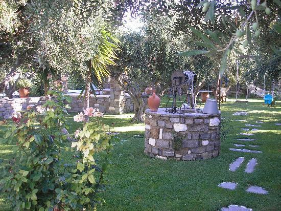 Pension Sofia: jardin d'eden