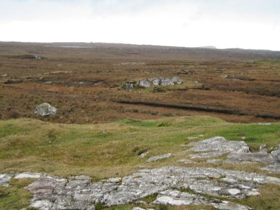 Alcock and Brown Landing Site: The land around the site