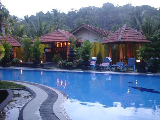 Flower Garden Hotel: Pool and bar