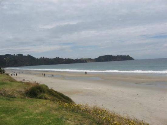 Waiheke Island Photo