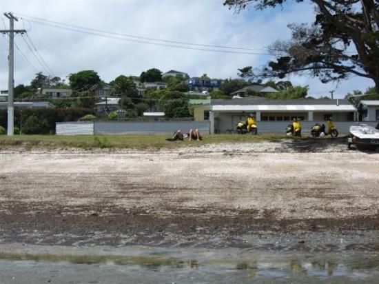 Waiheke Island Photo