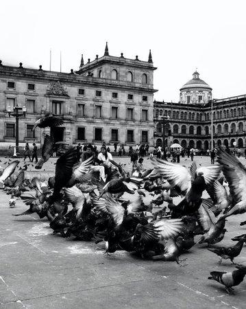 بوجوتا, كولومبيا: Mas fotoooos...