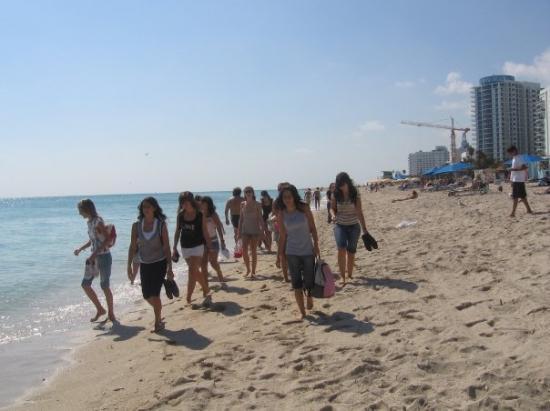 Miami Beach Fl Caminado Por La Playa