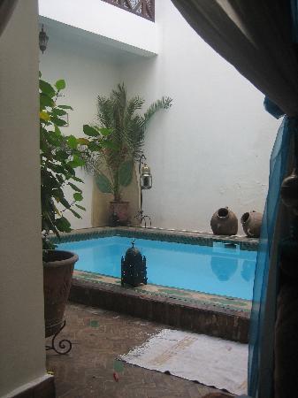 Riad Al Warda: La piscina