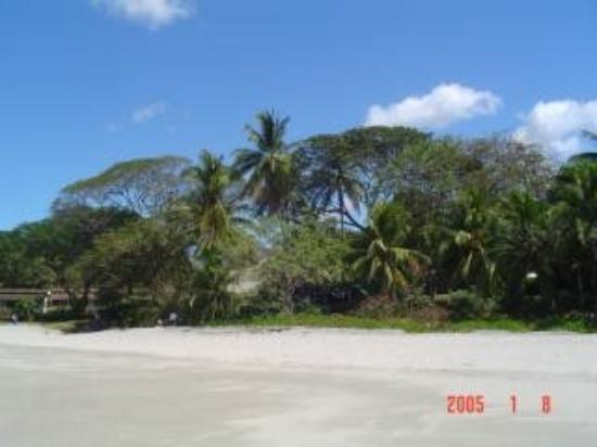 Playa Flamingo, คอสตาริกา: Flamingo2