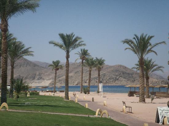 Mosaique Beach Resort Taba Heights: beach