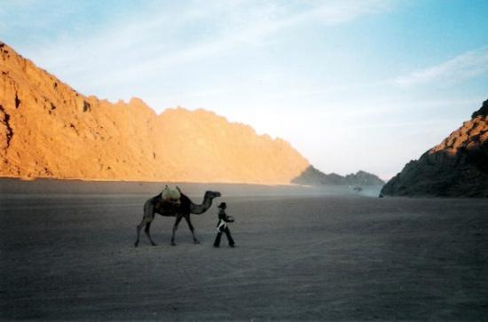 Saint Catherine, อียิปต์: Desert of Sinai