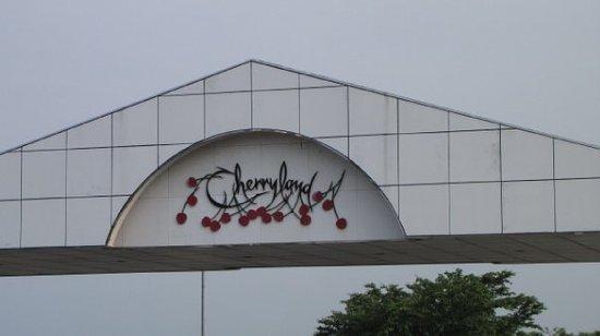 Cherry Land Sagae