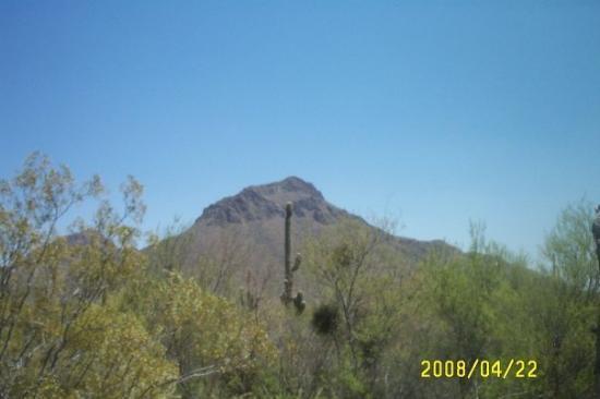 ทูซอน, อาริโซน่า: tuscon,Arizona
