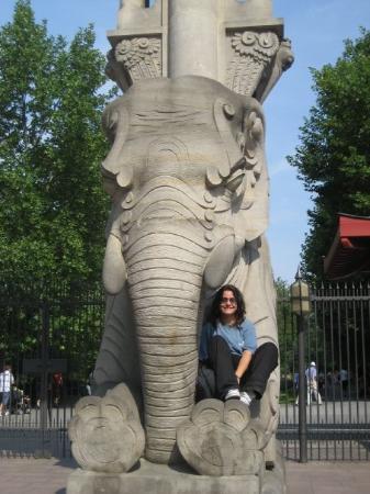 Berlin Zoological Garden: bERLIN - Zoo di berlino