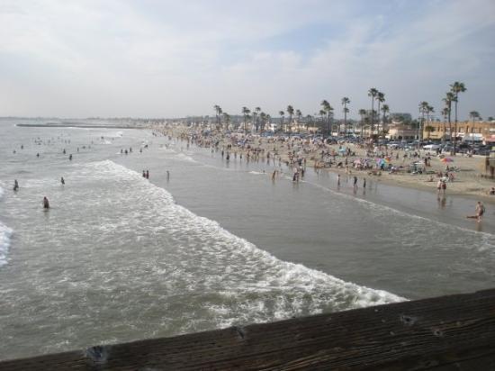 นิวพอร์ตบีช, แคลิฟอร์เนีย: Newport beach